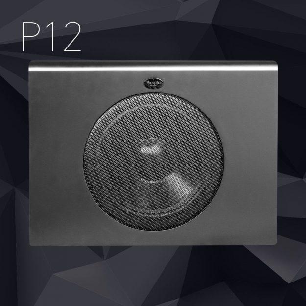 P12 subwoofer black